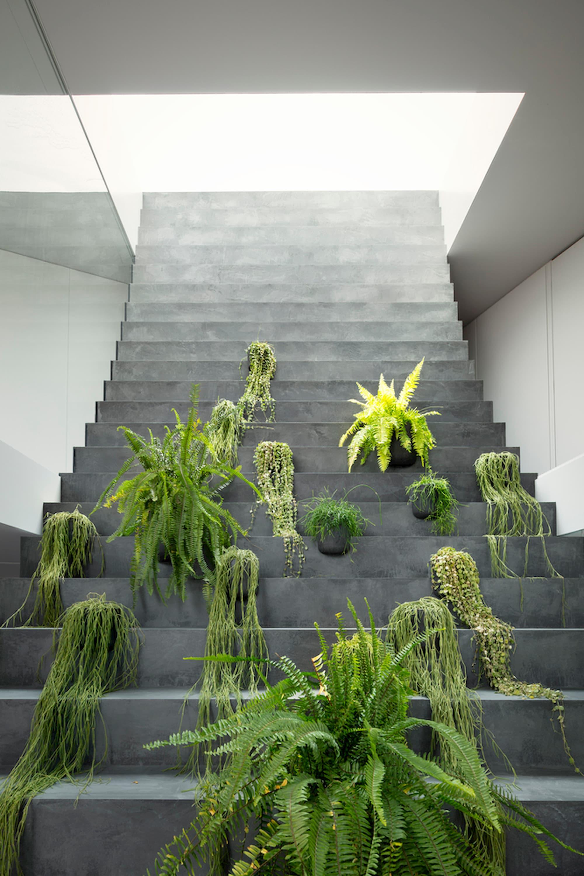 stairway_house40_takumi_ota
